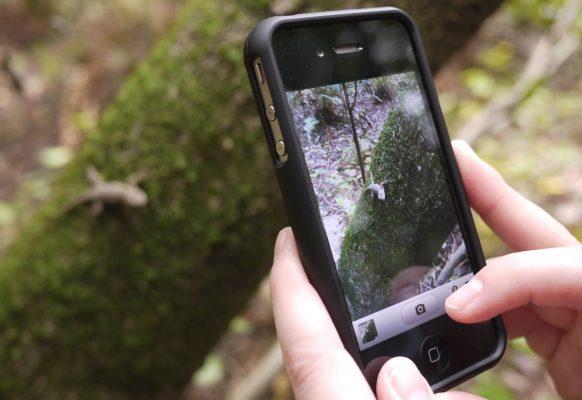 Los nuevos teléfonos permiten captar una fotografía y otros datos de interés